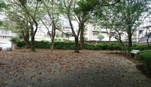 そろそろ秋〜な桜山写真