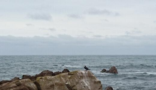 ふらっと平磯の海に行ってきた。