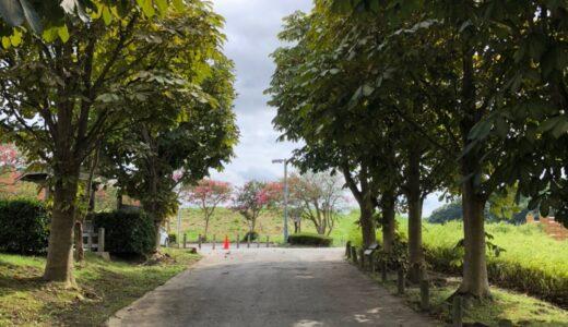 久しぶりに千波公園を歩いてきた